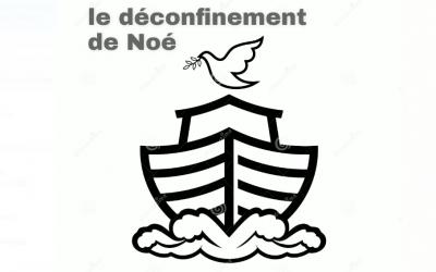 Le déconfinement de Noé